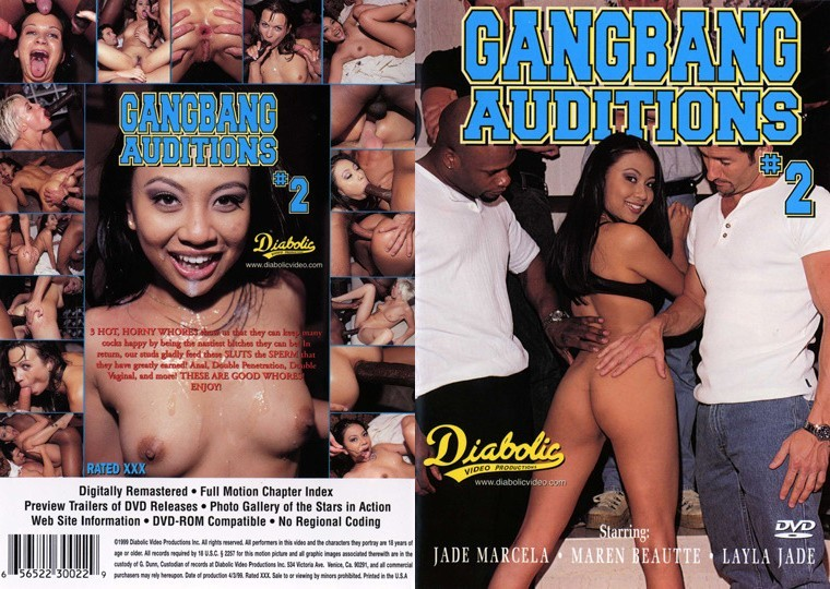 Gangbang Auditions 2 [1999/DVDRip]