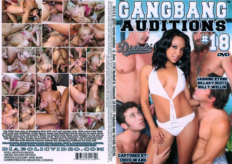 Gangbang Auditions 18 [2005/DVDRip]